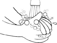 kit-cultivo-lavar-manos