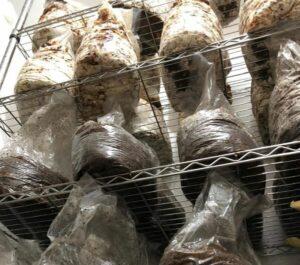 estanteria-setas-cultivo