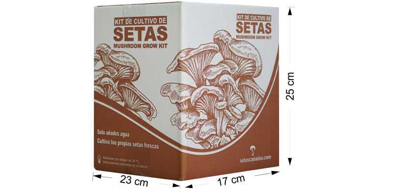 caja-kit-setas-medidas.1