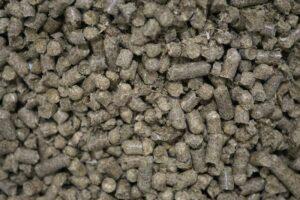 pellets cultivo setas