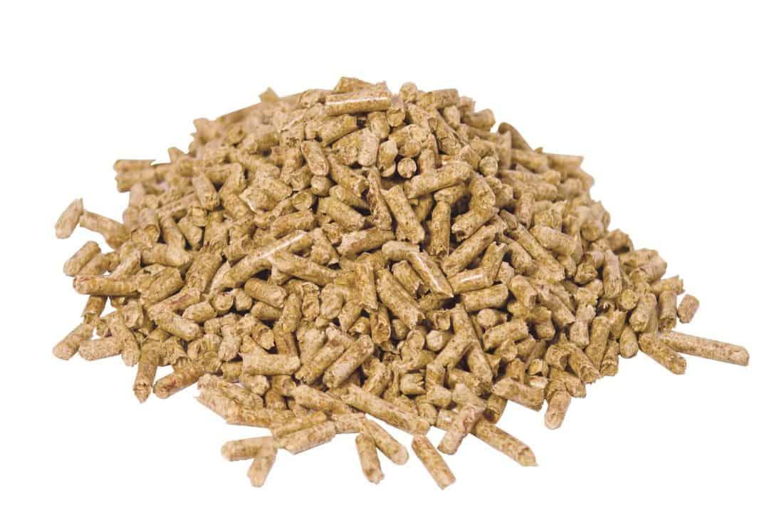 cultivar setas pellet